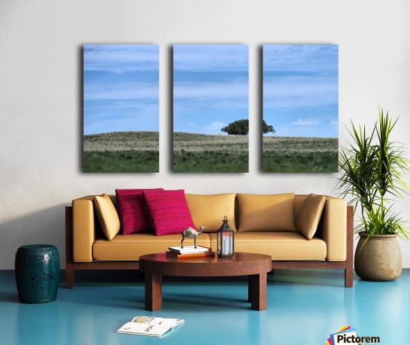 Prairie pleasantry Split Canvas print
