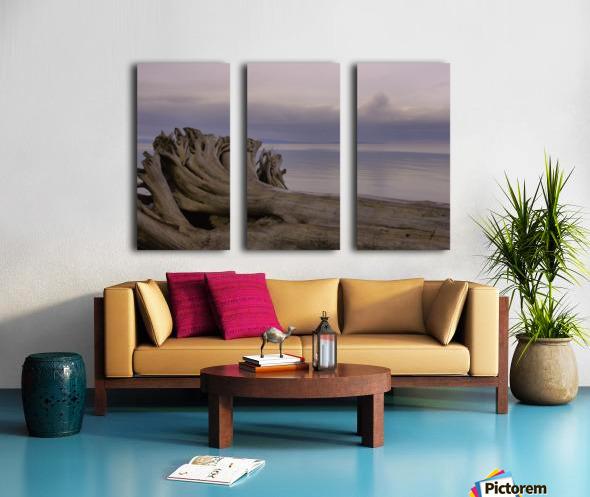 Driftwood Split Canvas print