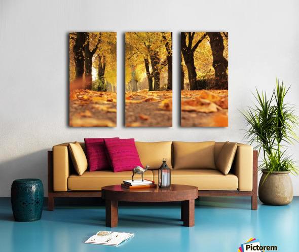 Beautiful Nature Landscape Tree Forest Trees Photography landscape photo Scenery Split Canvas print