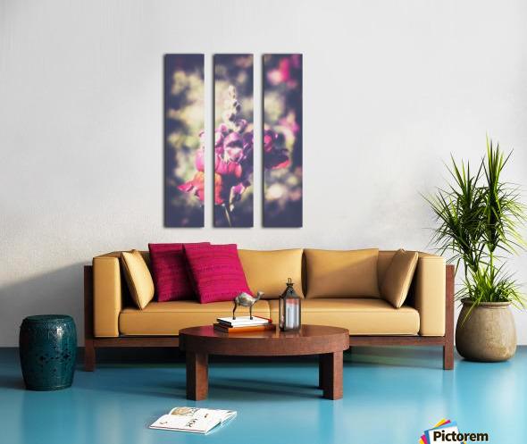 Lupine Fuchsia Split Canvas print