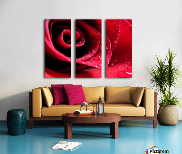 Pearly Petals Split Canvas print
