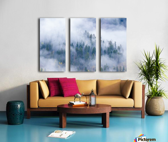 FOREST IN THE CLOUDS Split Canvas print