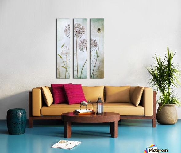 Allium Split Canvas print