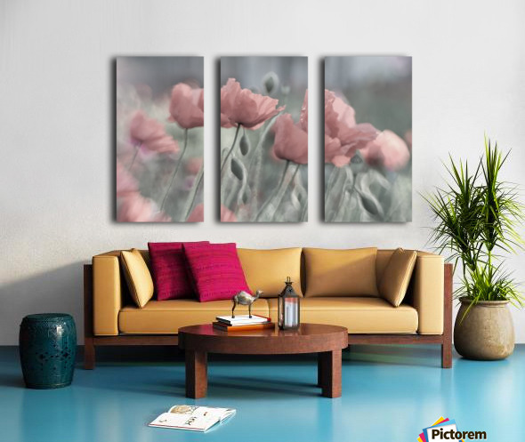 Softly Split Canvas print