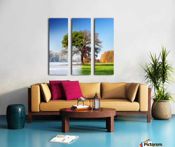 4 seasons Split Canvas print