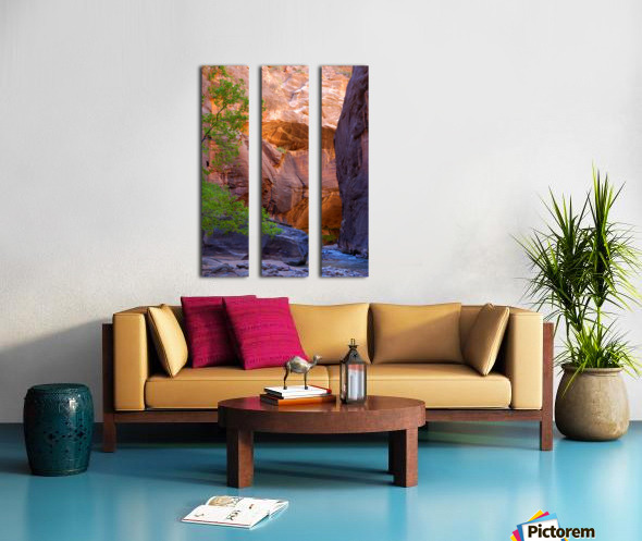 The Narrows Split Canvas print