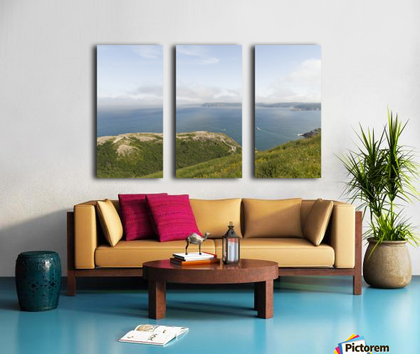 Vista from Signal Hill Split Canvas print
