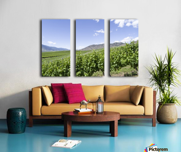 Okanagan Valley winery Split Canvas print
