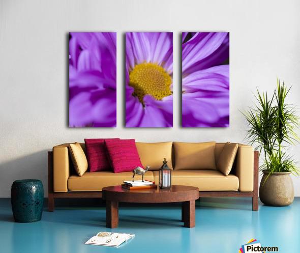 Chrysanthemum Split Canvas print