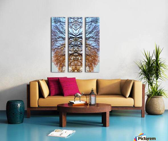 Abstract 4 Split Canvas print