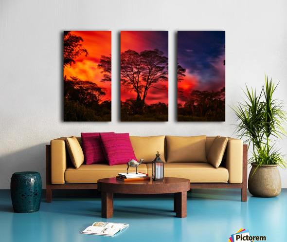 _IBC3569 Split Canvas print