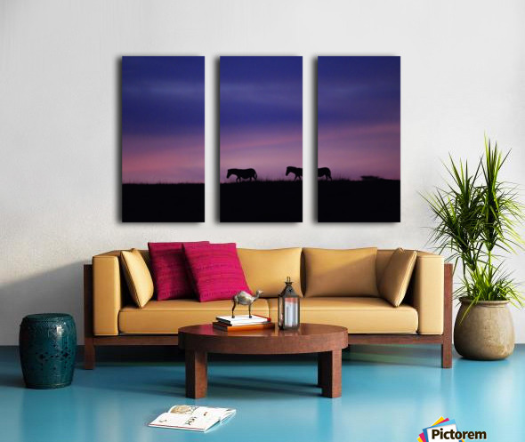 Zebra Sunrise Split Canvas print