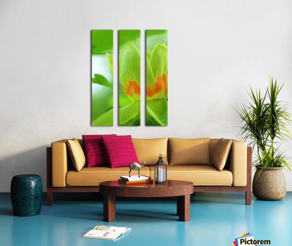 Yellow Poplar Flower Split Canvas print