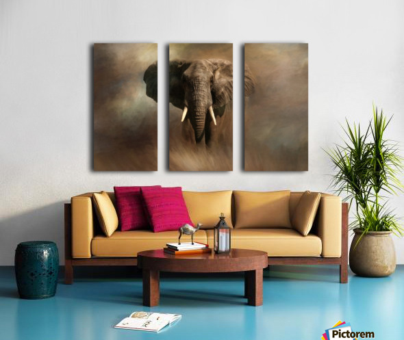 African Elephant Split Canvas print