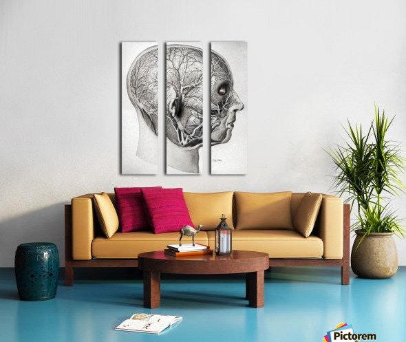 Nerves and Blood Vessels of the Head Split Canvas print