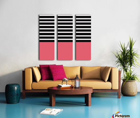 Black & White Stripes with Bitter Sweet Patch Split Canvas print