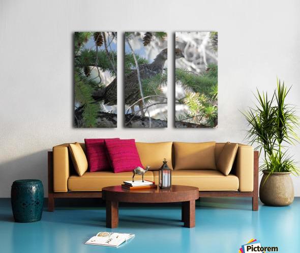 ruffed Split Canvas print