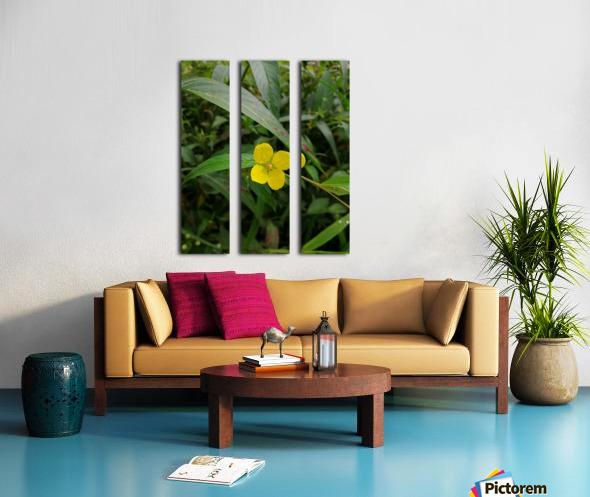 IMG_20190210_125037 Split Canvas print