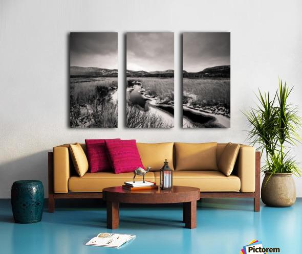 Cape Breton Highlands Split Canvas print