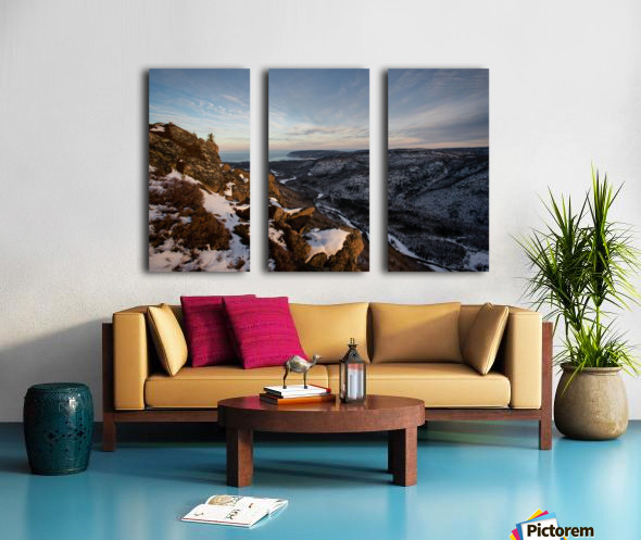 Franey Winter Split Canvas print