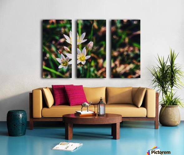 Flowers 2 Split Canvas print