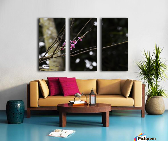 Pink Blossoms Split Canvas print
