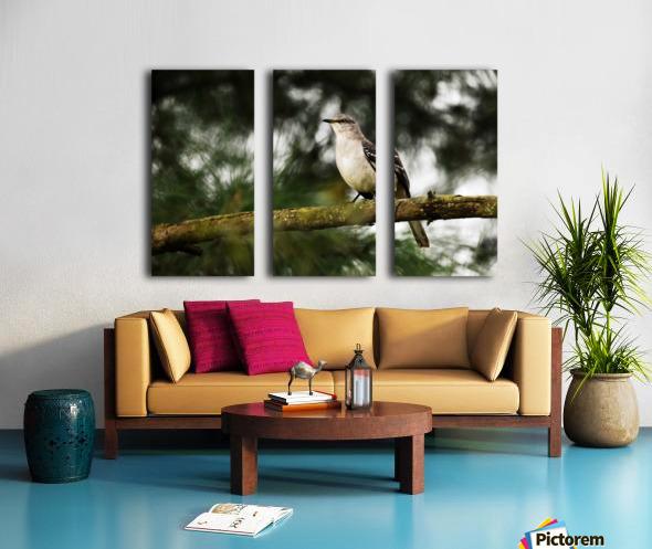 Mockingbird Split Canvas print