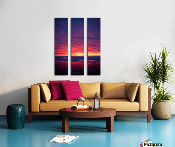 Rouge Split Canvas print