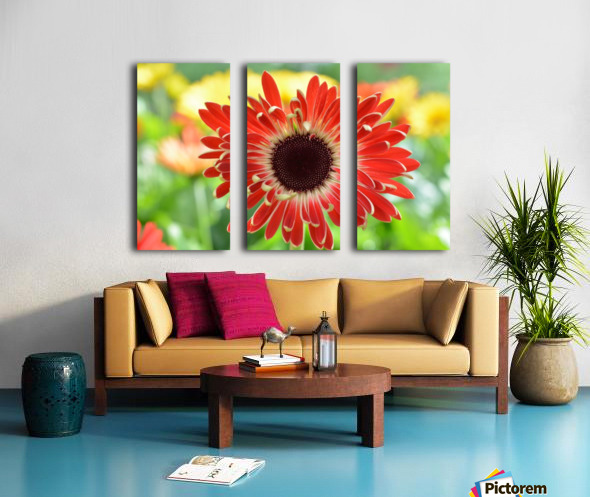 Red Flower Photograph Split Canvas print