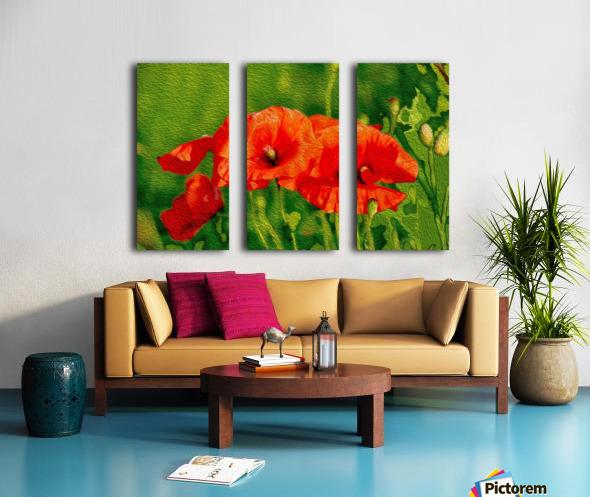 Red Poppies Split Canvas print