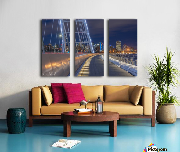 Walterdale_Bridge_NIK9898 Split Canvas print