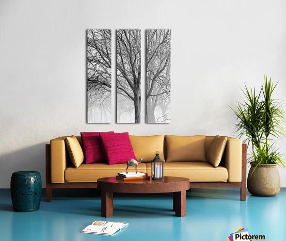 Trees in the Mist Split Canvas print