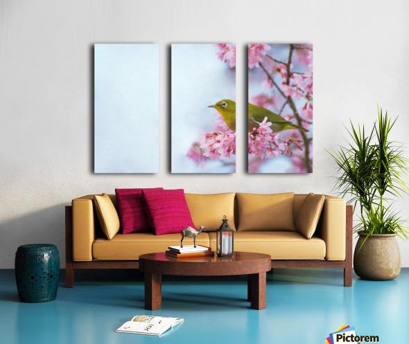 Bird In Sakura Cherry Blossom Tree Split Canvas print