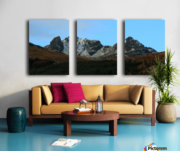The Cobler  Split Canvas print
