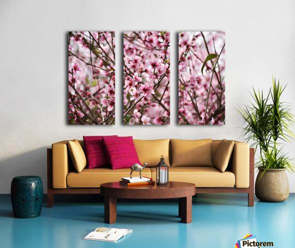 Pink Flowers Split Canvas print