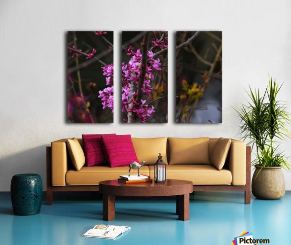Pink Trees Split Canvas print