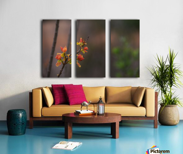 orange blossoms Split Canvas print