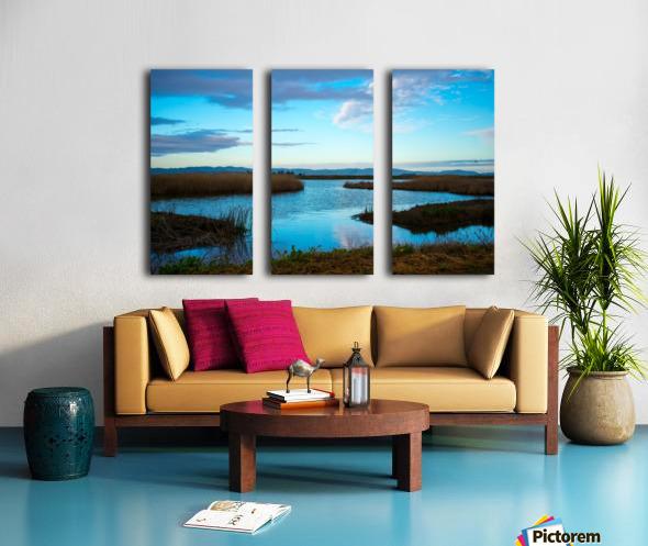 20190228 DSC_0065 2 Split Canvas print