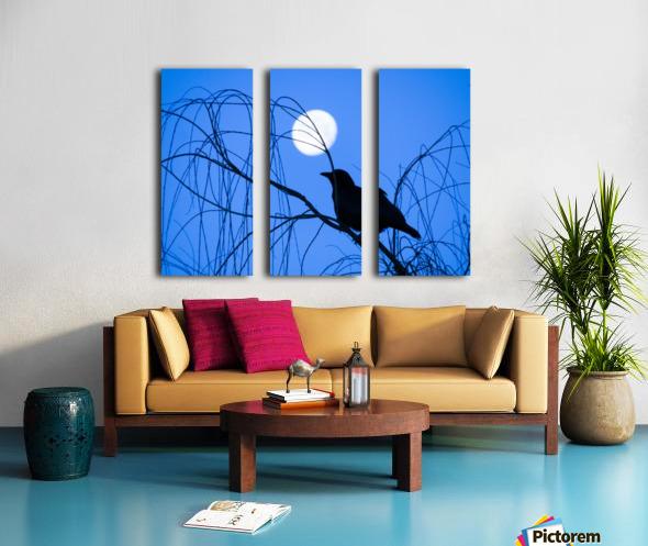 20190221 IMG_3305 2 Split Canvas print