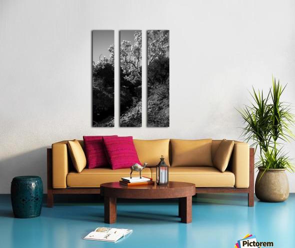 20190316 DSC_0136 2 Split Canvas print