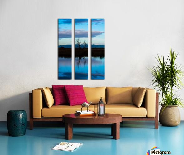 20190228 DSC_0081 3 Split Canvas print