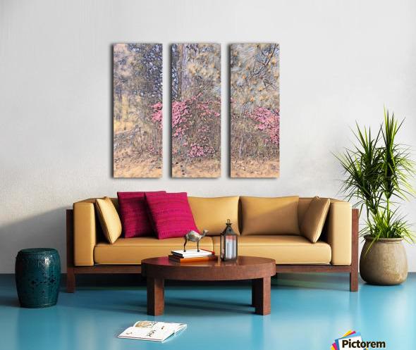 22E87D39 0480 45DB AB7D 1F5C4D7E44D6 Split Canvas print