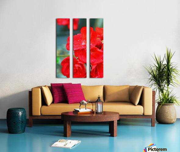 Elegantly Red Split Canvas print