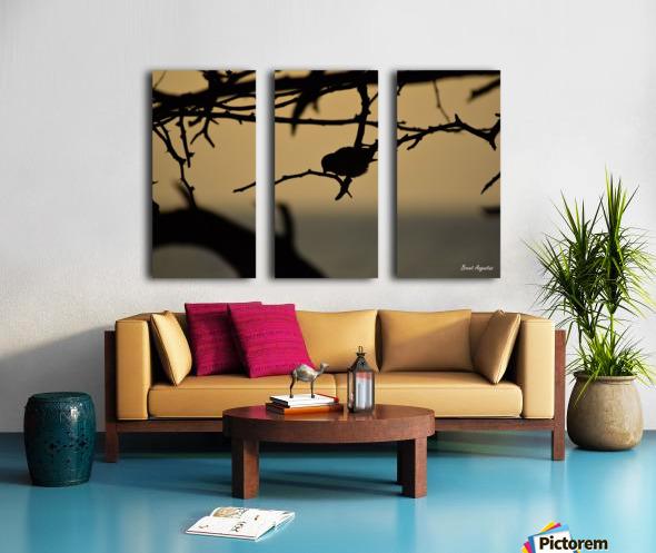 Branch Split Canvas print