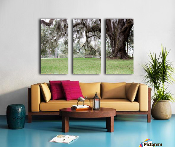 Hello Bubba Split Canvas print