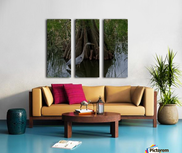 Heron Split Canvas print