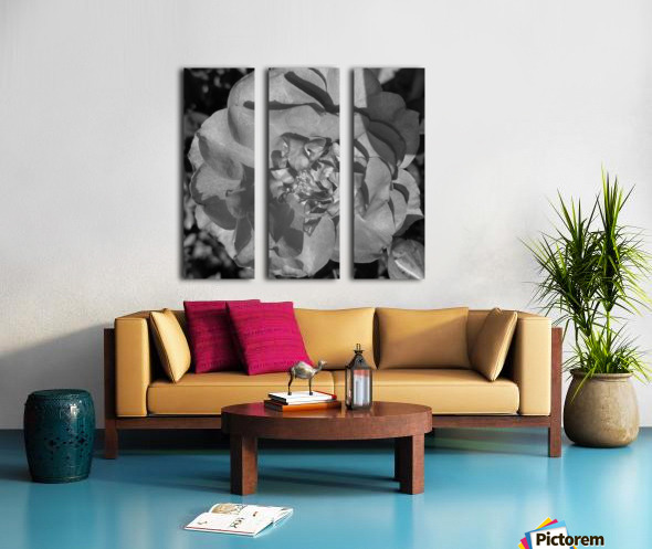 20190403_135548 Split Canvas print
