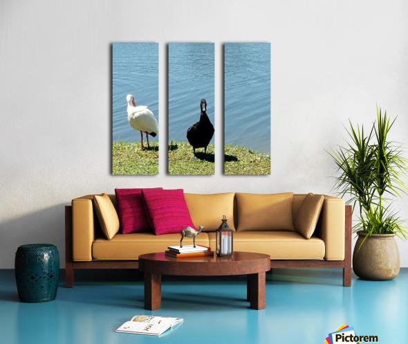 20190406_145356 Split Canvas print