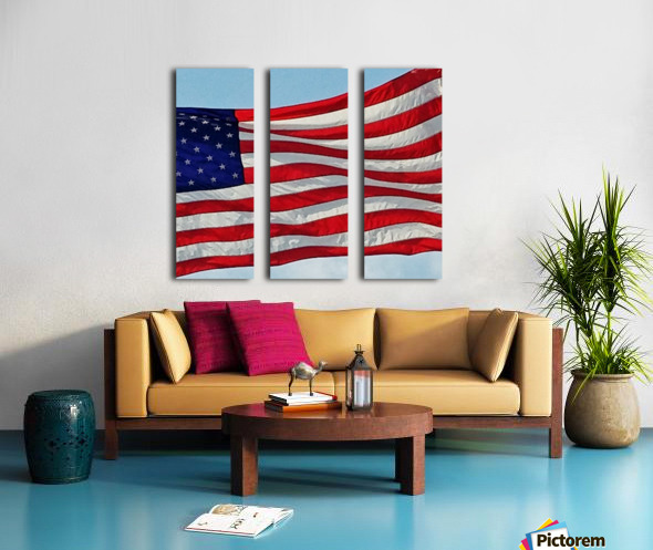 America the Beautiful Split Canvas print