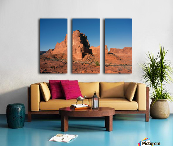 Desert Scape Split Canvas print